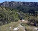 plezanje-krk-belove-stene-pot-navzdol
