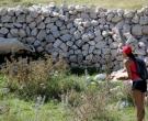 hranjenje-ovac-uvala-mala-luka