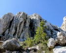 plezanje-krk-belove-stene-plezalisce